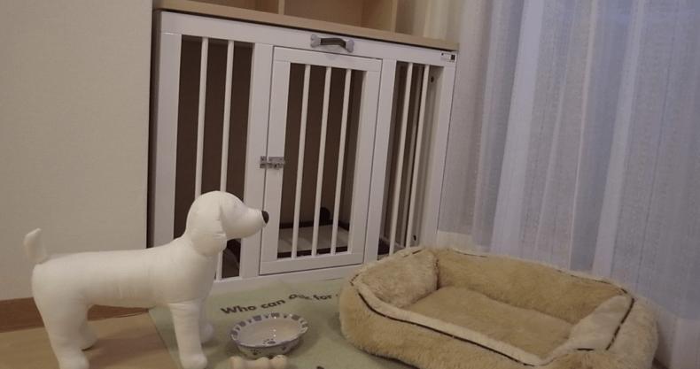 犬のステージング